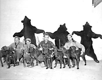 Plott Hound: The State Dog